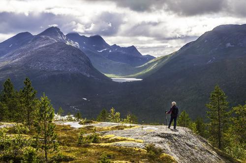 Motivet er fra Vettfjellet på grensa mellom Hamarøy og Tysfjord. Vatnet i bakgrunnen er Stuollovatnet. Langs dette vatnet går det  en slags sti til den lulesamiske bygda Musken i Tysfjord. Denne stien har tidligere vært merket.