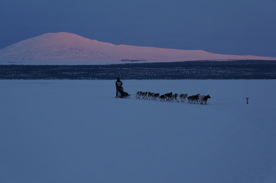 Hundekjøring i Femundsmarka, Stor-Svuku i bakgrunnen.