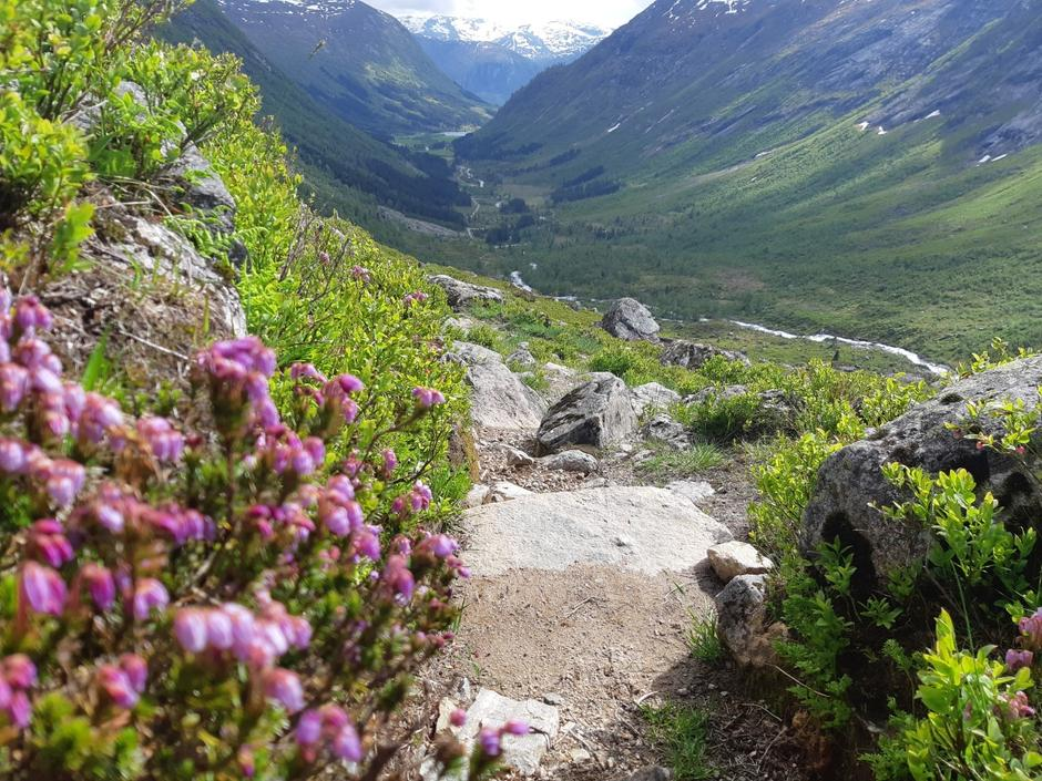 Utsyn mot Legestølen og Årdalen frå oppstigninga mot Stegsvatnet.