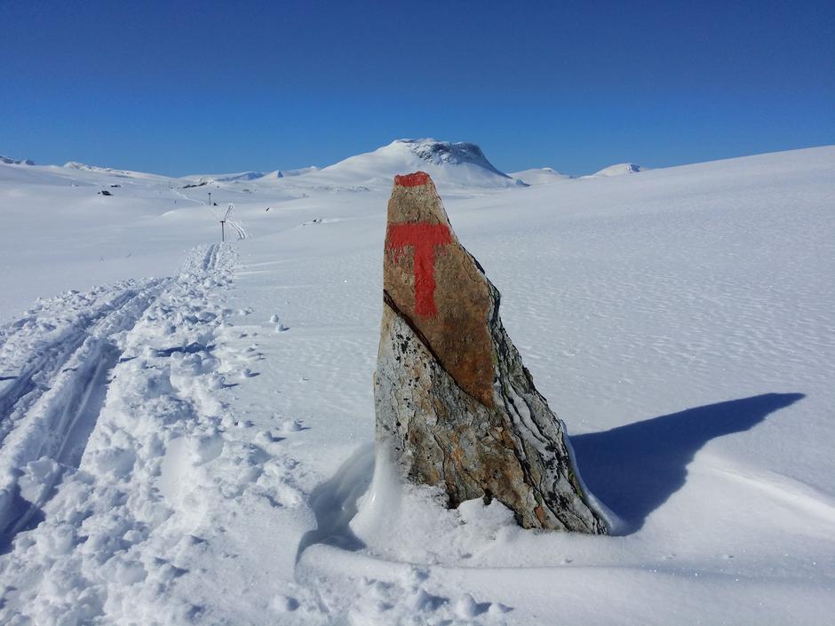 Saltfjellet, på vei ned fra Bjellåvasstua mot Tollådal.
