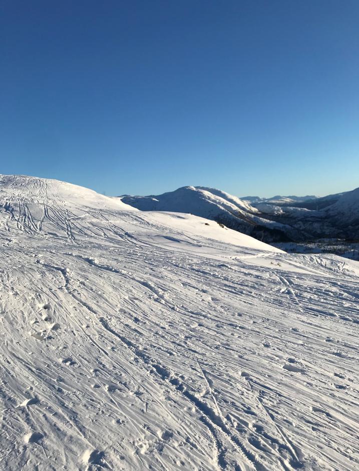 Torsdag 11.2: Noen tusen skispor gjør det nokså hardpakket. Men finfint med feller. Hausdalshorga (775 moh) i bakgrunnen.