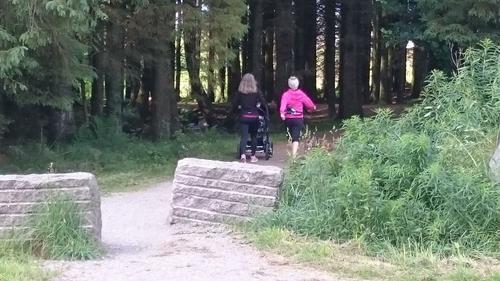 På vei inn i skogholtet langs Dalabekken
