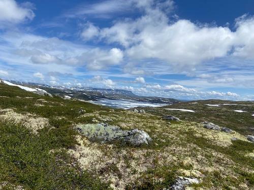 Uke 32: Føremelding for Hardangervidda