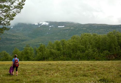 Storamyri på Stødnaåsen med utsikt mot Høganos og Berdalen.