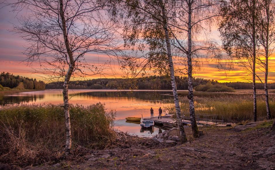 Goksjø i solnedgang
