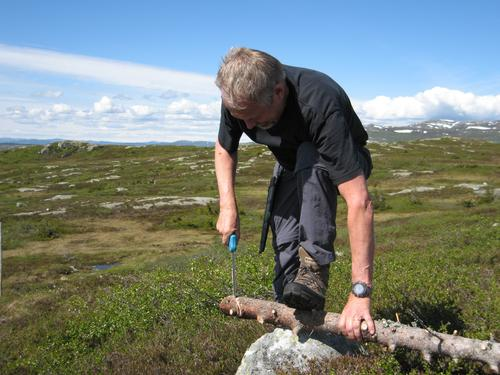 Skiløypa fra Søtdalsstulen til Krøkla