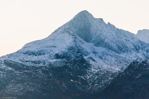 Store Blåmann i November fra Kaldfjorden