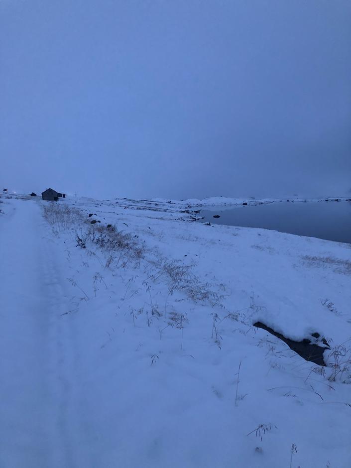 På Haukeliseter har det snødd en god del, men nå er det plussgrader og regn. Snøen ligger enda, men er våt og tung.
