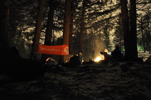 Natt i naturen