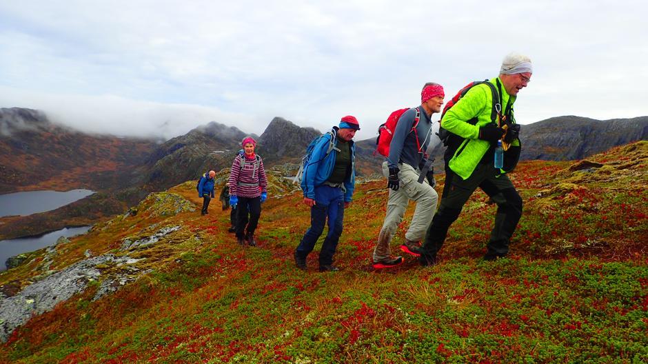 Flotte høstfarger i fjellet.
