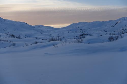 Oppover Tjørnadalen.