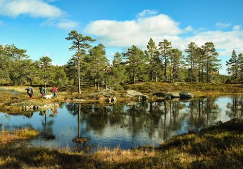 DNT ung til Sveinsbufjell