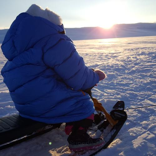 Turtips: Lett tur med pulk på Hardangervidda