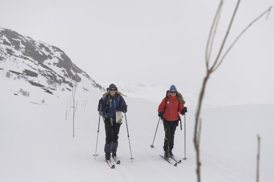 Gå trykt på ski i fjellet - følg kvisten.