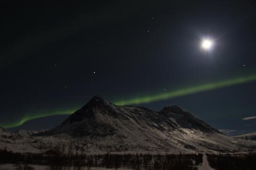 På jakt etter nordlyset i Øksfjord
