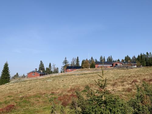 Høstferie i Hamarregionen