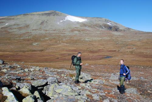 Øystre Fagerdalshøe, ved fangstgropa på nordryggen, mot Raslet (1854 moh)