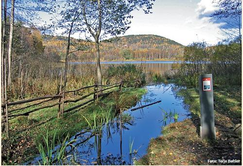 Kolsås-Dælivann Landskapsvernområde 40 år!