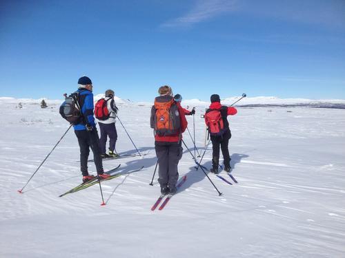 Skitur Dalen- Kjølafjellet