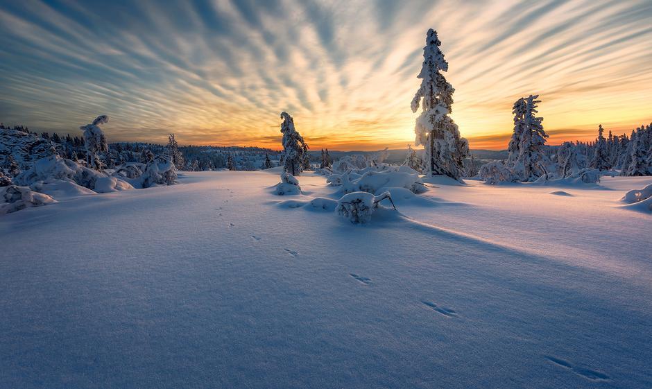 VAKKERT: Skrimfjella er et paradis om vinteren.