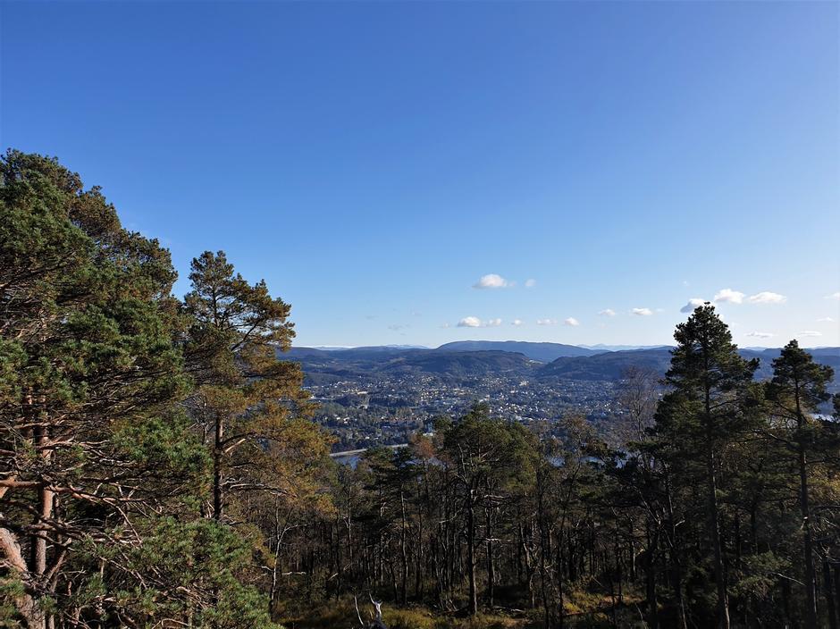 Utsikt fra Gullstølen til Folgefonna.