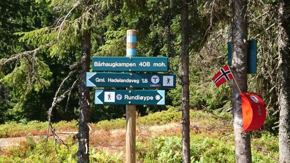 Borhaugkampen i Nannestad