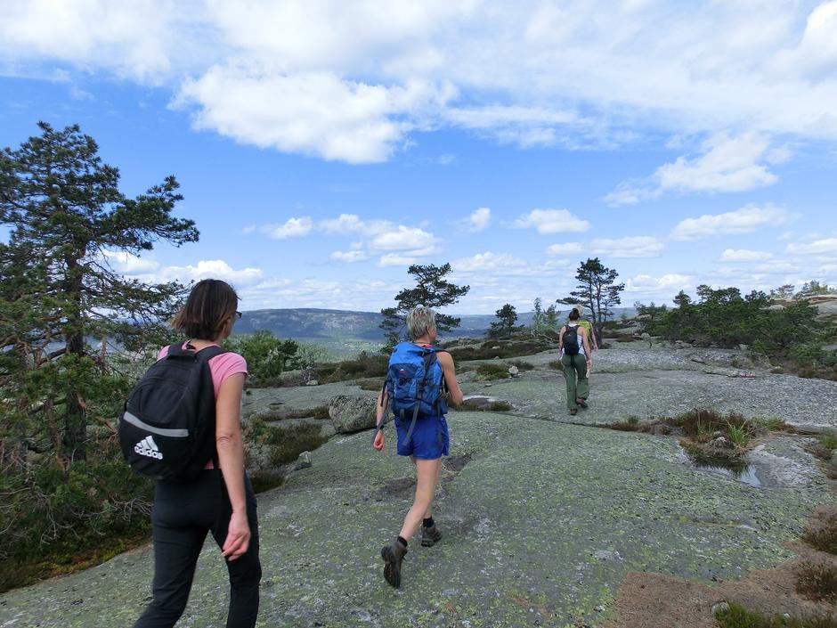 Åpne fjell og god utsikt på Vedlausfjell.
