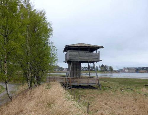 Fugletittetårn på Ilene