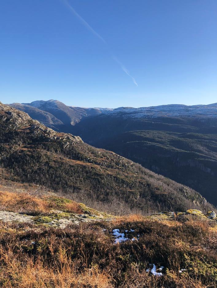 Utsikt mot Bergsdalsfjellene