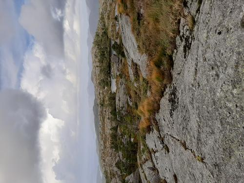 Viddasfjellet