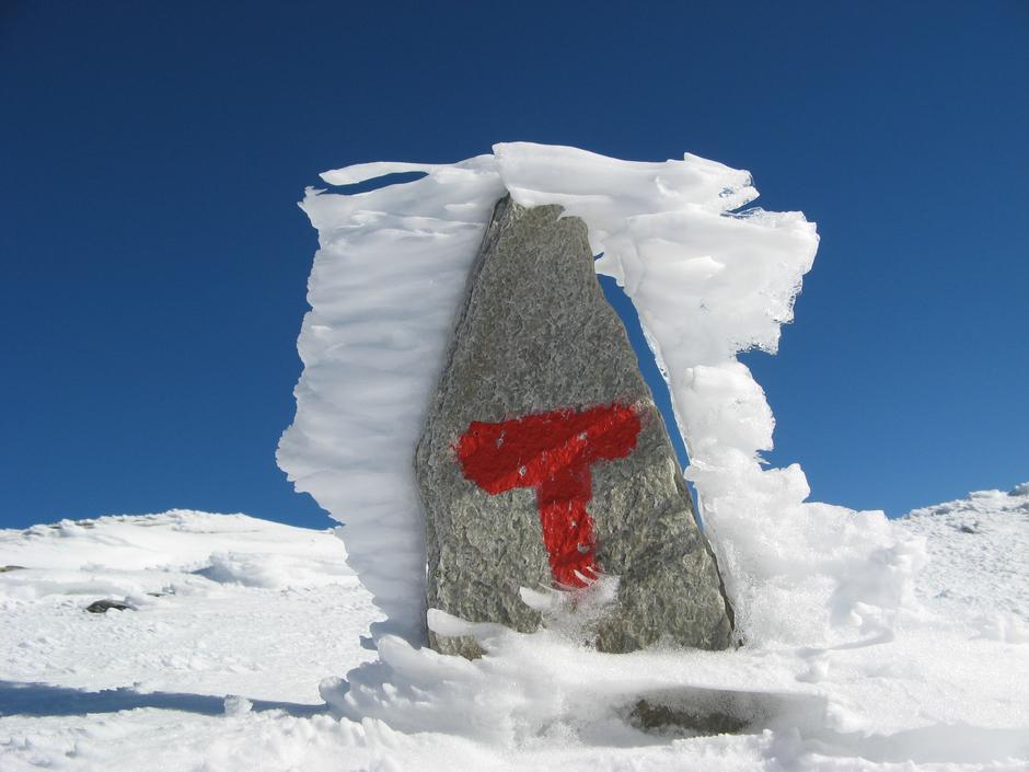 Bildet er tatt på Storronden.