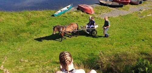 Kjekt med hestebesøk på Gaudland