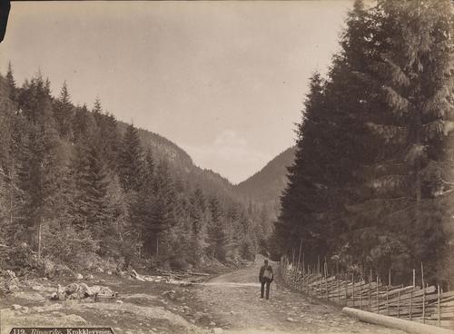 Bildet vier «Krokklevveien» («Krogkleven») på 1880- eller 1890-tallet.