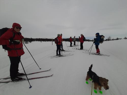 23. februar hadde Seniorgruppa skitur på Vaset