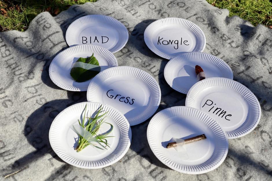 La barnet finne ting til leken ute i naturen og teip dem på tallerkener.