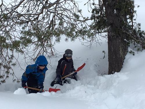 Kjekt å leika i snøen
