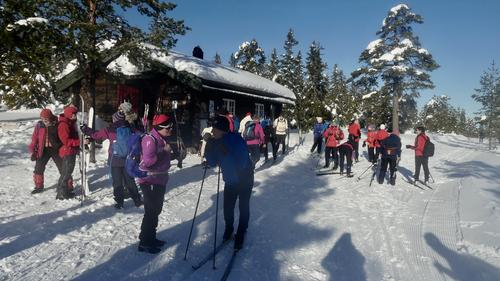 Skitur  ved Vollkoia til Blåmyrkoia 13.02.2019.