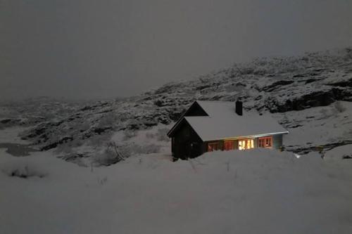 Uke 45: Nysnø på 770 meter