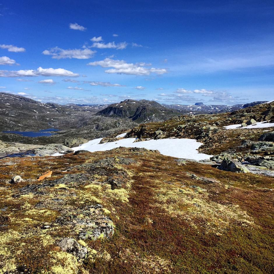 Hårteigen i horisonten. Bildet tatt fra stien mot Stavali fra Lofthus på 1000 moh.