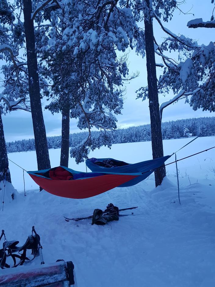 Natt i naturen med Barnas Turlag Drammen