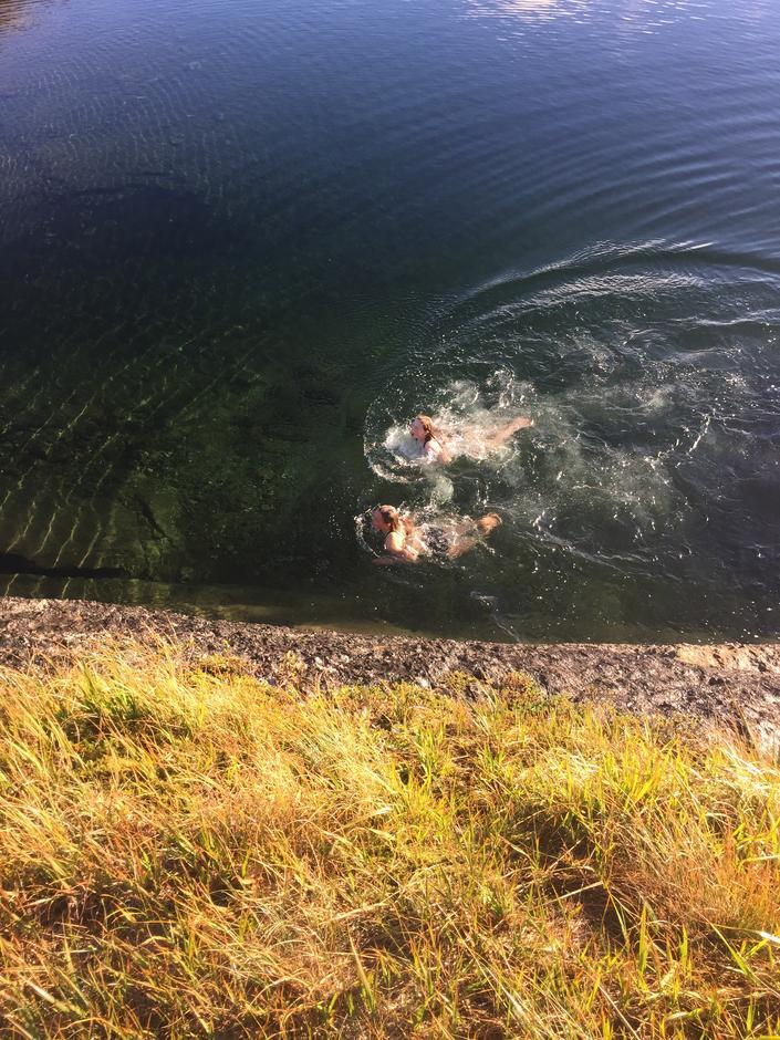 Noen svømte lengre enn andre :)