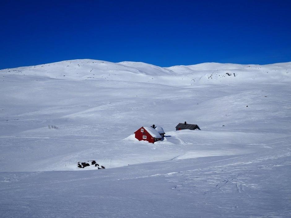 Lørdag 17.3: Åsedalen i Stølsheimen. Kvistet via Selhamar fra Trefall og Vikafjell