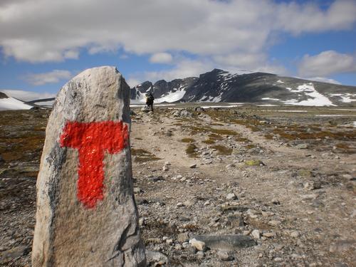 Fra Snøheim mot Snøhetta. Foto: Sølvi Snildalsli