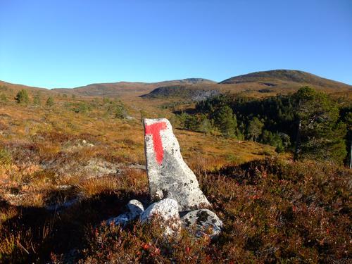 Føremelding for stien Myrholten til Hardbakkhytta