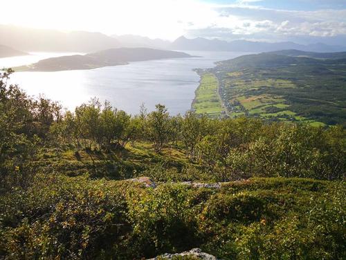 Utsikt over Kvæfjorden med Kveøya