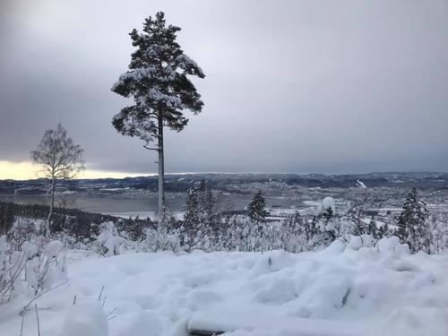 Tur til fots vinterstid
