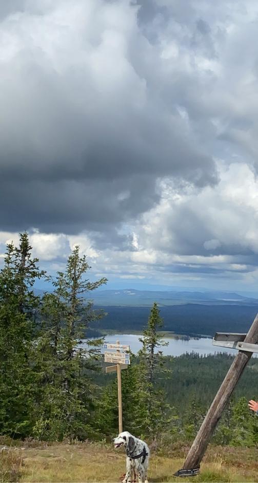 Utsikt fra Brumundkampen