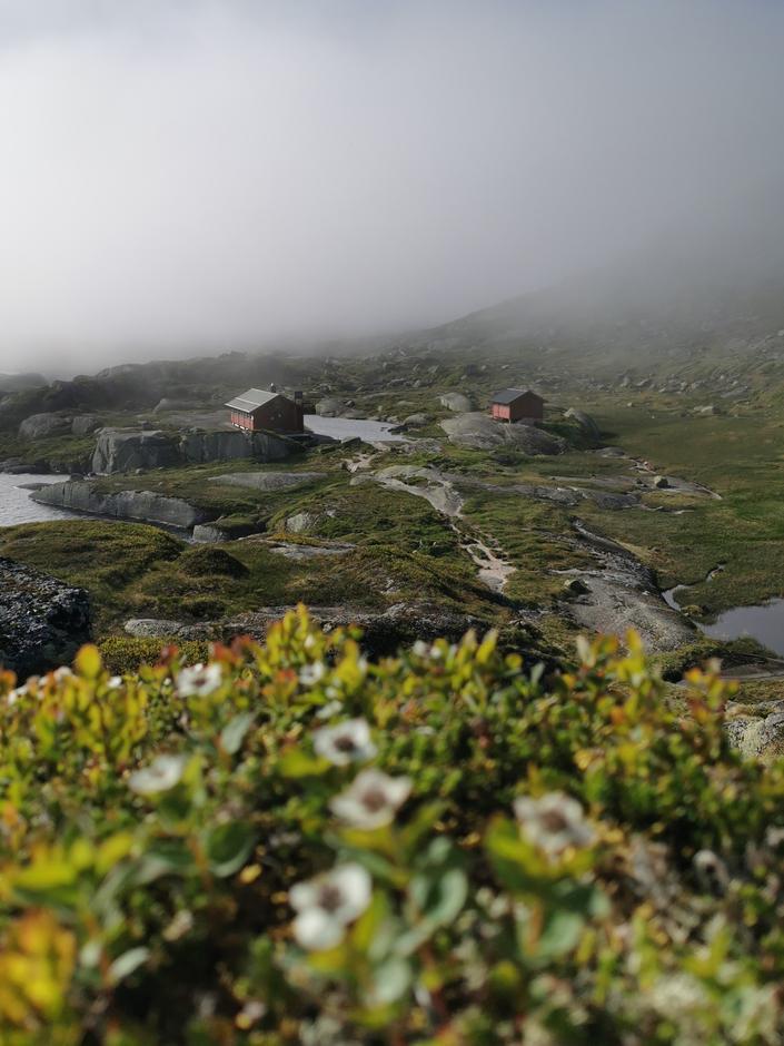 BØRSTEINEN: Kort vei fra Lyseveien ligger dette vesle hytteparadiset. Her er det fortsatt mye ledig i sommer!