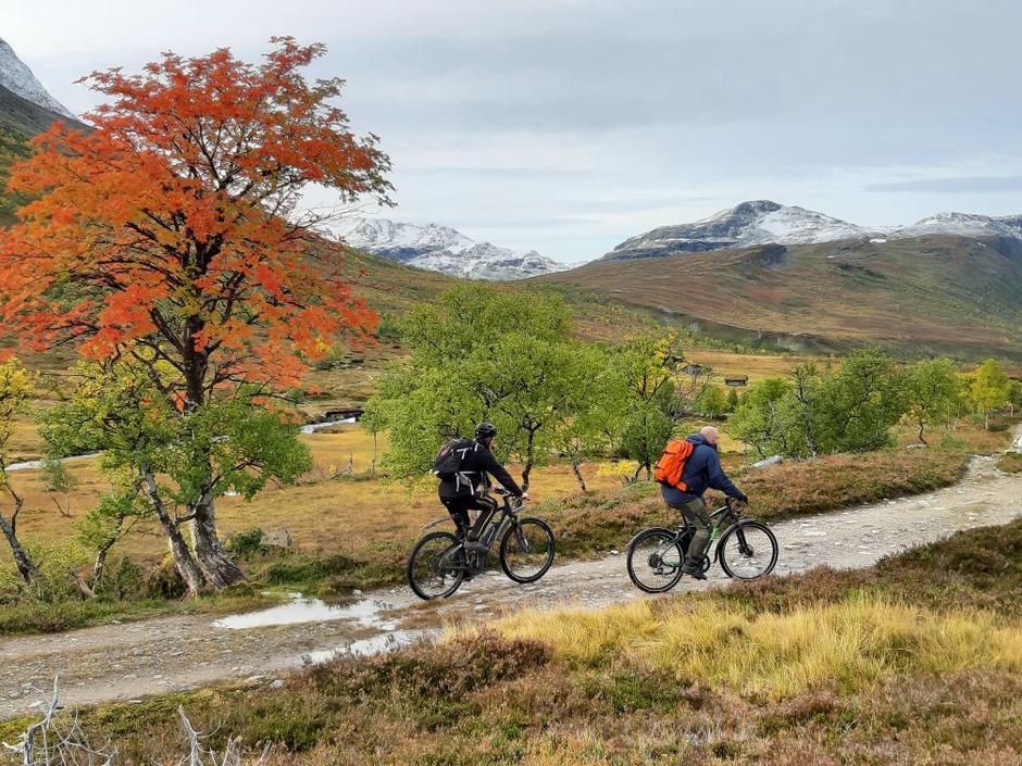 Å sykle innover Jøldalen er en ypperlig høsttur.