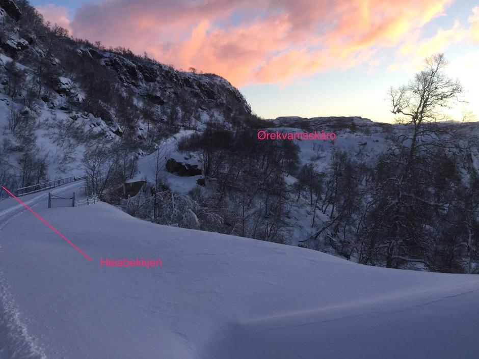 Gullingen 6. januar 2017 20cm og -10 grader kl 12